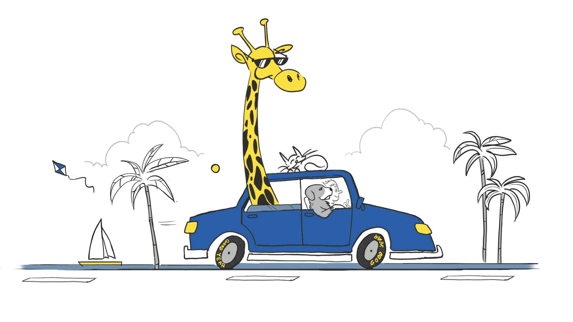9. Háziállatokat soha ne hagyjon szabadon mozogni az autóban!