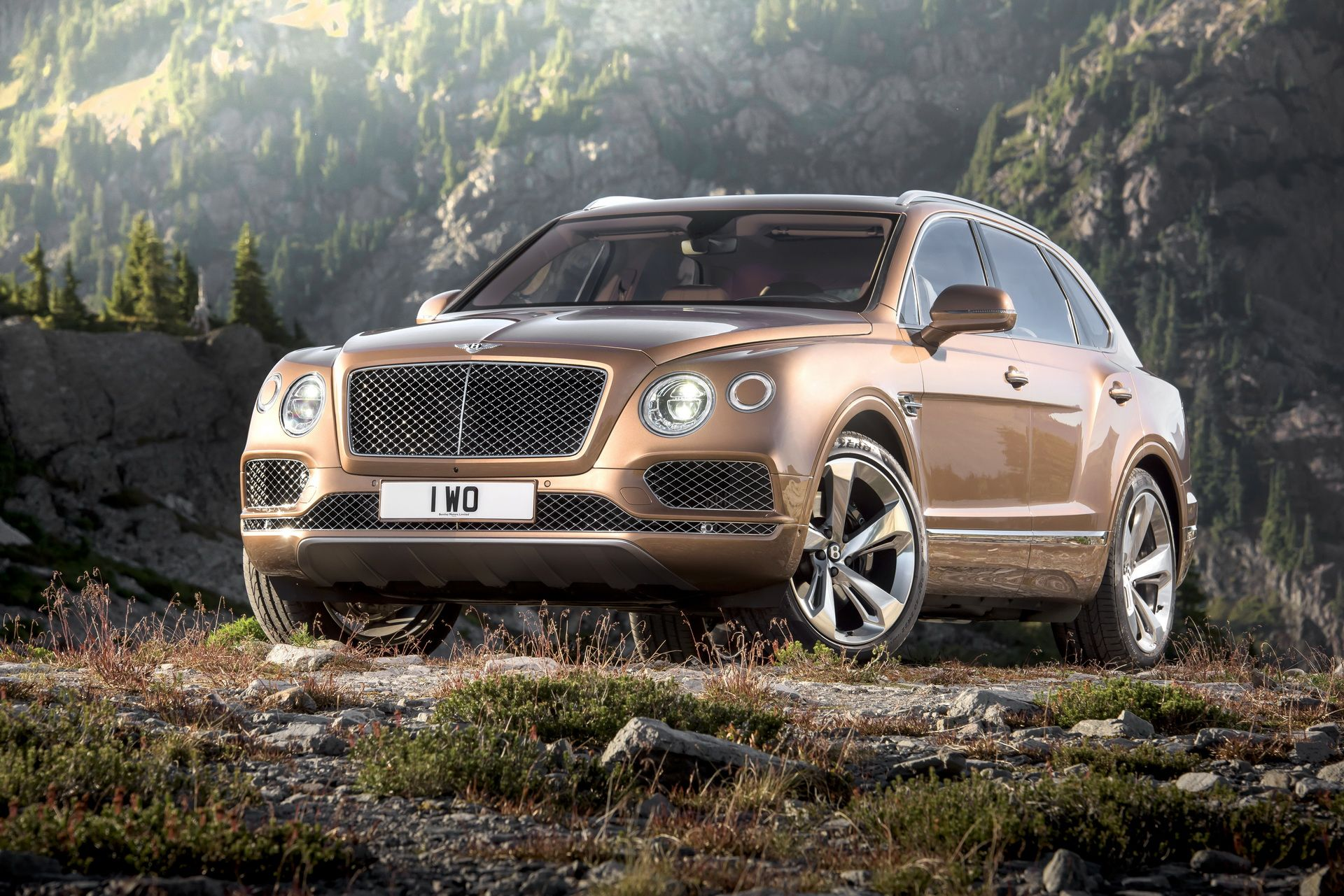 2a7a655c-bentley-bentayga-w12-6