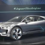 Jaguari-Pace12