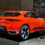 Jaguari-Pace2