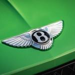 A denevérek és a madarak is számítanak a Bentley-nek!