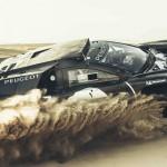 Peugeot DKR2015-1