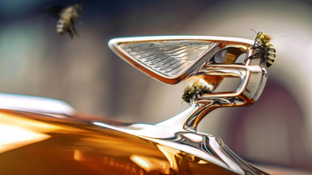 Méhészkedésbe fogott a Bentley